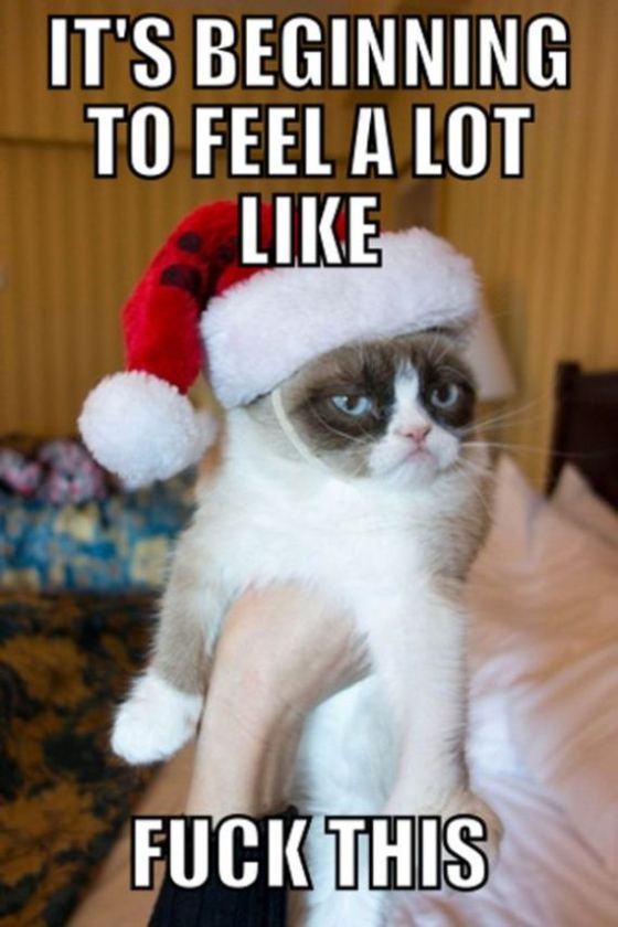 02-grumpy-cat-christmas
