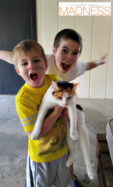 Cat and boys